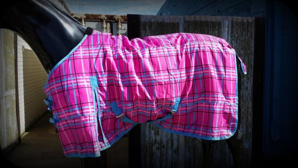 F244 Buckles for Crossed Surcingle Ersatzschnallen Horse Blanket Double